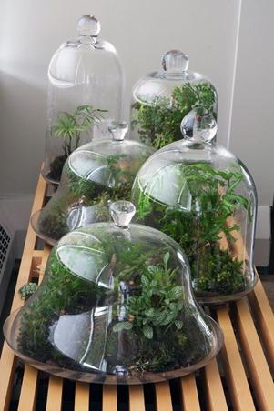 Простые идеи озеленения балкона